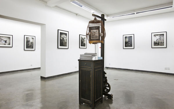 www.curator.ie, Don Gallery, Shanghai, curator Cheng Xixing.